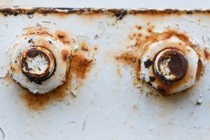 lack of anti corrosion coating under screws
