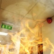 Building regulations and standards mandate fire resistant coatings in buildings