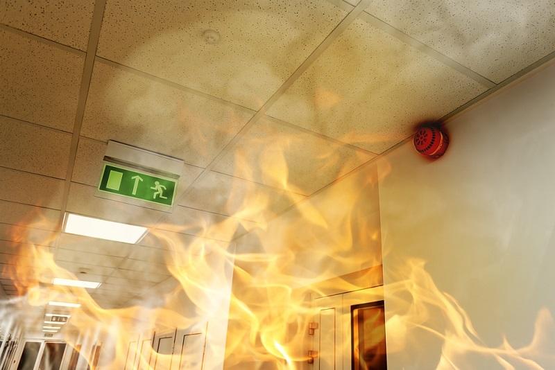 fireproof paint slowing down fire spread